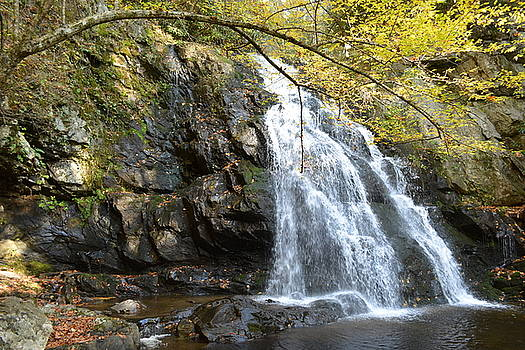 Beautiful Rockfaced Waterfall by Patricia Twardzik