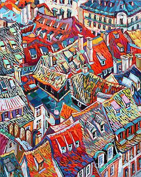 Beautiful Roofs by Elizabeth Elkin