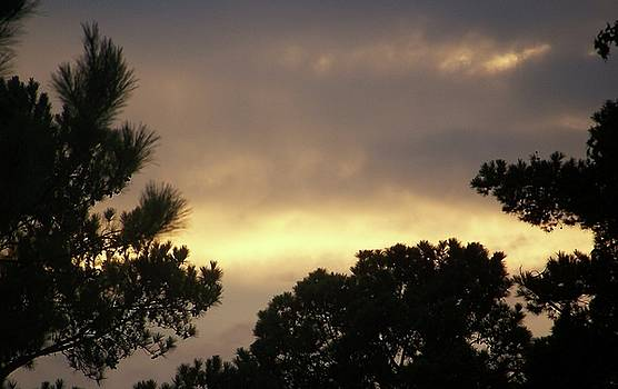 Beautiful sky and clouds by Susan Anderson