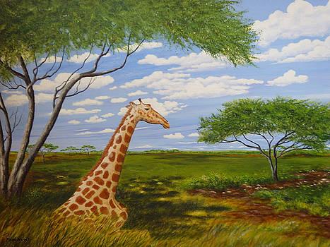 Beautiful Solitude by Pam Hurst