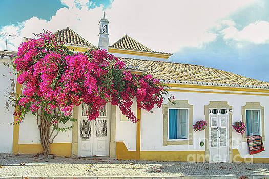 Patricia Hofmeester - Beautiful street in Tavira, Portugal