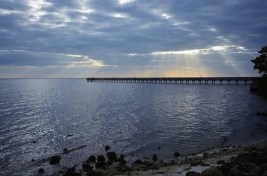 Patricia Twardzik - Beautiful Sun Rays Over the Harbor