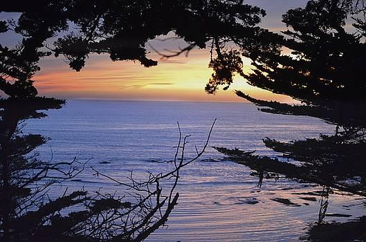 Beautiful sunset by Alex King