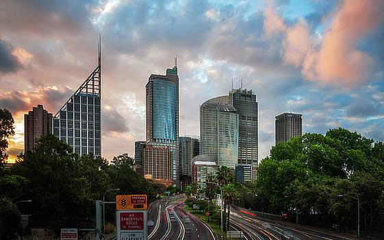 Beautiful Sunset behind Sydney Skyline by Daniela Constantinescu