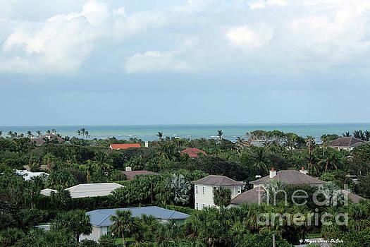 Beautiful Vero Beach Florida by Megan Dirsa-DuBois