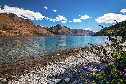 Beautiful view of Lake Wakatipu by Daniela Constantinescu