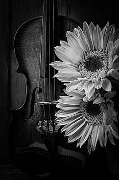Beautiful Violin And Sunflowers by Garry Gay