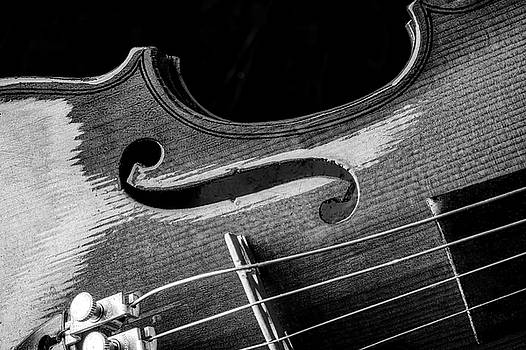 Beautiful Violin Close Up In Black And White by Garry Gay