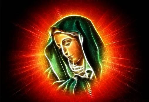 Beautiful Virgin Mary Portrait by Pamela Johnson