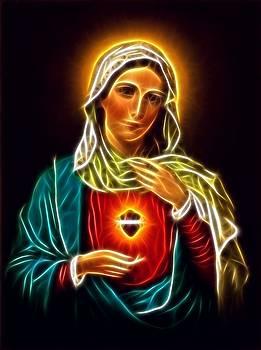 Beautiful Virgin Mary Sacred Heart by Pamela Johnson