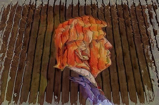 Donald Looser - Fence Dream by Maciek Froncisz