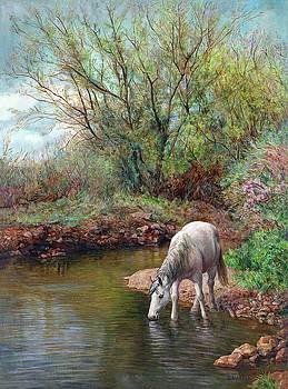 Beautiful White Horse and Enchanting Spring by Svitozar Nenyuk