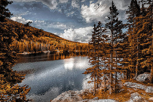 Beautiful Wilderness by Garett Gabriel