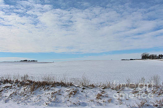 Beautiful Winter Day by Kathy M Krause