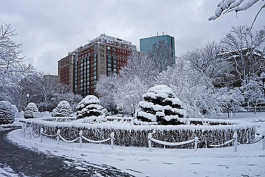 Toby McGuire - Beautiful Winter Wonderland in the Boston Public Garden Boston MA