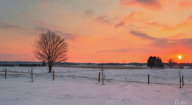 Beauty Across the Field by Garvin Hunter