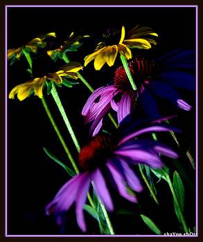 Beauty Alone by Shayne Johnson Fleming