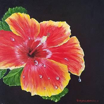 Beauty  by Christie Minalga
