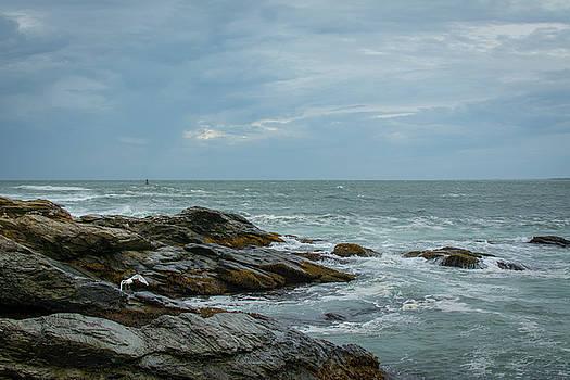 Beauty in Rhode Island by Jerri Moon Cantone