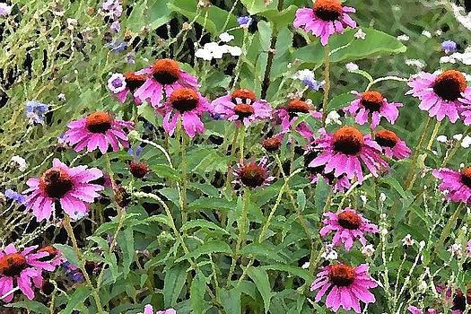 Beauty in the Flower Garden by Kim Bemis
