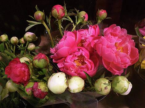 Beauty in the Whole Foods Flower Dept. by Steve Kobb