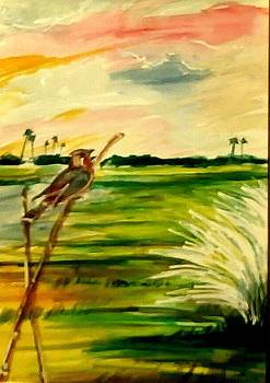 Beauty of nature-- Bird and the Sky by Asm Ambia Biplob