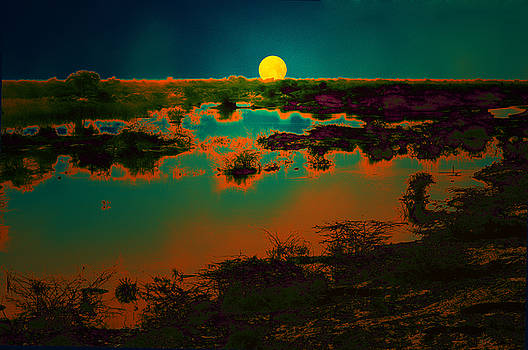 Bliss Of Art - Beauty of nature
