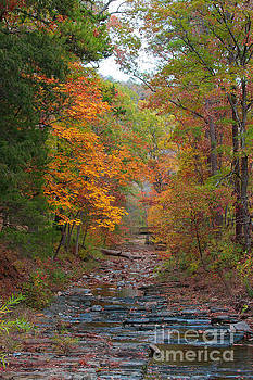 Autumn Creek by Jerry Bunger
