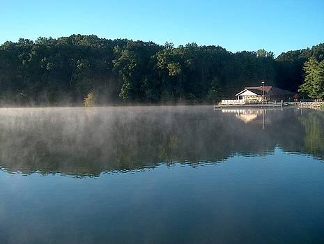Beaver Dam Early Morning Mist by Denise   Hoff