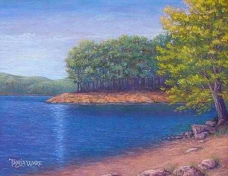 Beaver Lake Blue by Tanja Ware