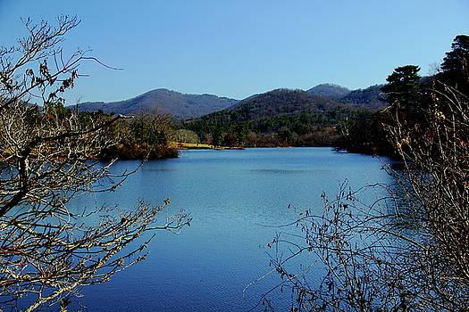 Allen Nice-Webb - Beaver Lake View