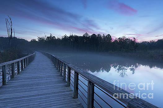 Beaver Marsh Dawn by Joshua Clark