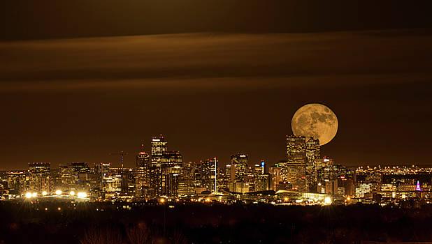 Beaver Moonrise by Kristal Kraft