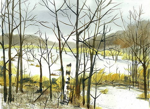Beaver Pond in November by Bud Bullivant