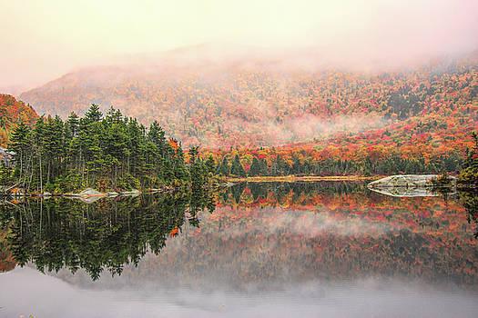 Beaver Pond New Hampshire by Jeff Folger
