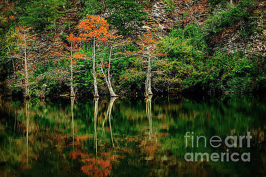 Beaver's Bend Color Explosion by Tamyra Ayles