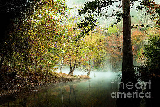 Beavers Bend Creek in Fall by Iris Greenwell