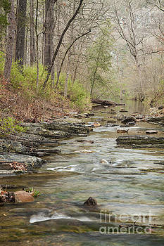 Beavers Bend Creek by Iris Greenwell