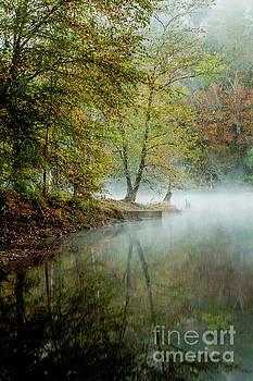 Beavers Bend Creek Misty Morning by Iris Greenwell