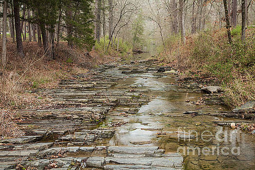 Beavers Bend Creek Winter Morning by Iris Greenwell