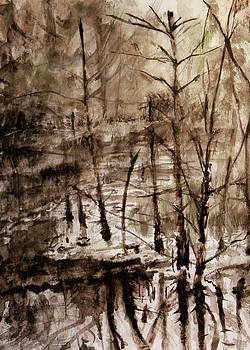 Beaver's View by Susie Gordon