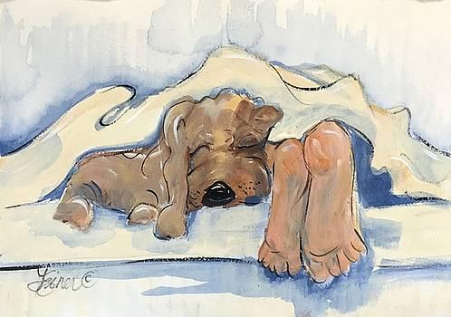 Bed Partner by Terri Einer
