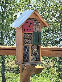Bee Box by Kay Gilley