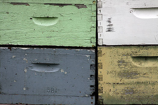 Bee Boxes by Kelly Lucero