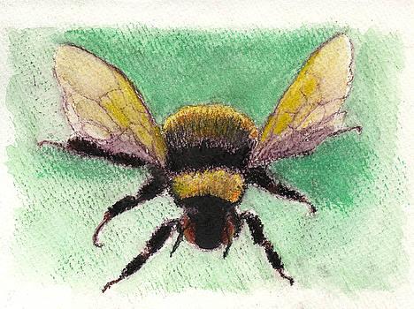 Bee by Edward Corpus