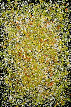 Bee Pollen by Jacky Phaengtho