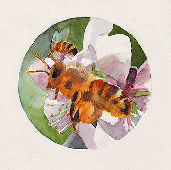Bees On Amond Blossoms by Edward Corpus