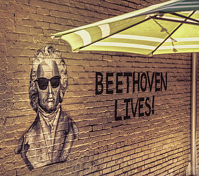 Beethoven Lives 1 by Steven Greenbaum