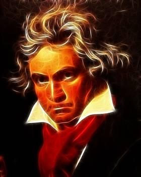 Beethoven by Pamela Johnson