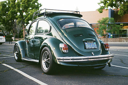 Beetle by Agustin Urbano